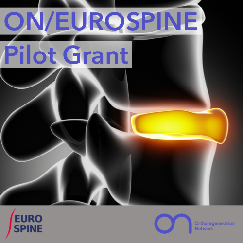 ON_EUROSPINE_Pilot_500x500_201012_0.PNG